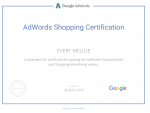 Google Partners - adwords shopping certification